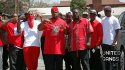 Page ii bloods why do people create gangs or band together in groups the color red is very important to the bloods they wear it to show pride in their gang the color could be shown through a full red outfit or altavistaventures Images